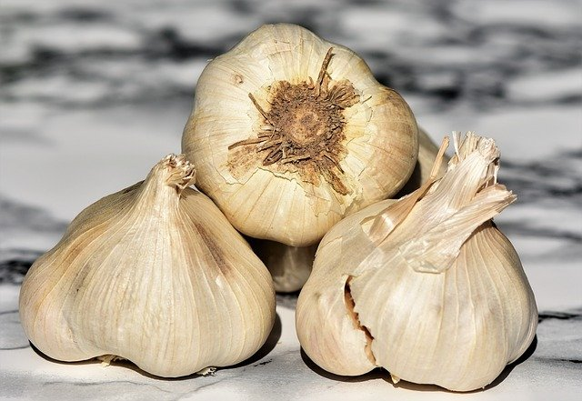 Immunity Boosting Vegetables Garlic is Rich in Vitamin C