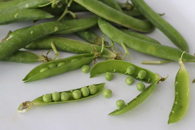 Immunity Boosting Vegetables Green Peas is Rich in Vitamin C